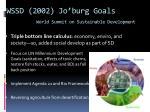 wssd 2002 jo burg goals world summit on sustainable development