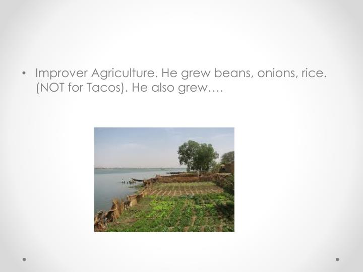 Improver Agriculture. He grew beans, onions, rice. (NOT for Tacos). He also grew….