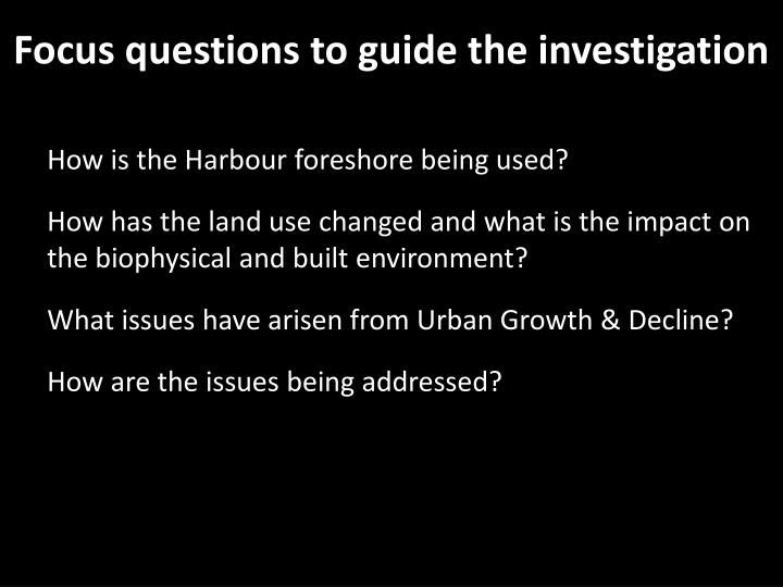 Focus questions to guide the investigation