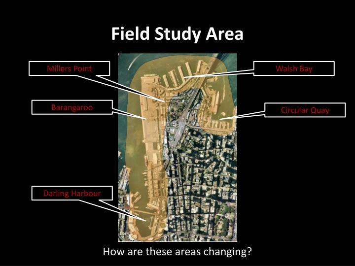 Field Study Area