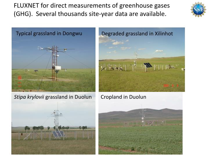 FLUXNET for direct measurements of greenhouse gases (GHG).  Several thousands site-year data are available.