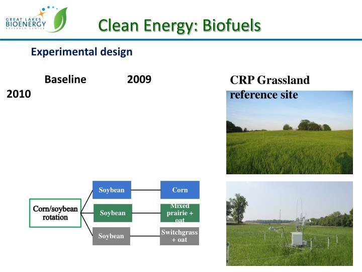 Clean Energy: Biofuels