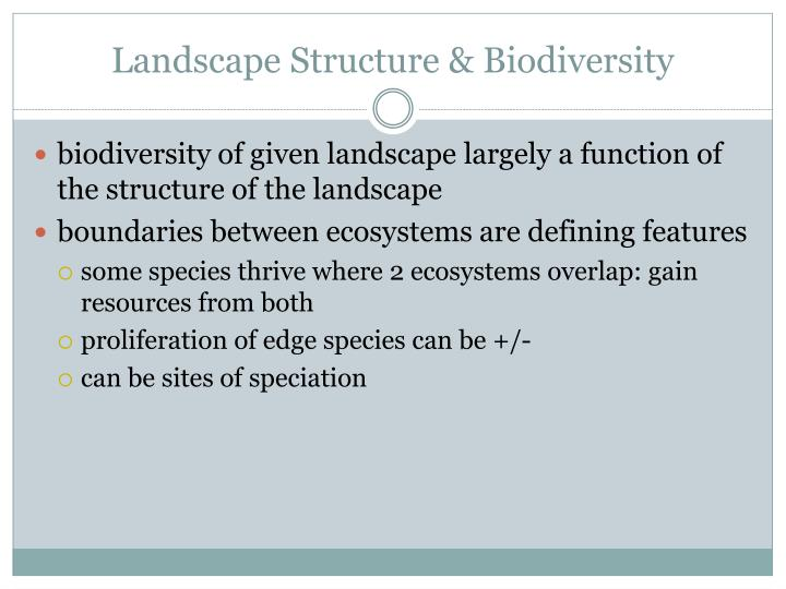 Landscape Structure & Biodiversity