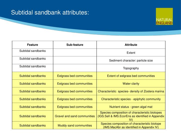 Subtidal sandbank attributes: