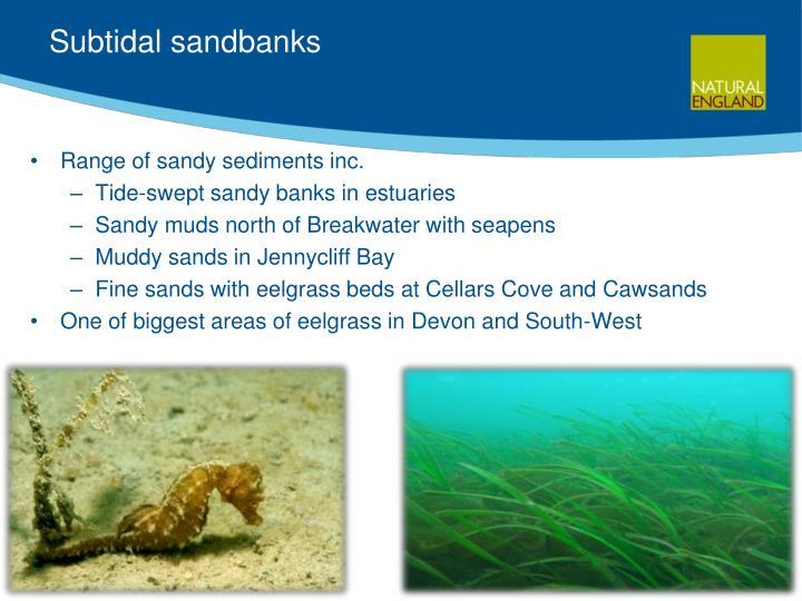 Subtidal sandbanks