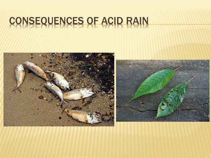 Consequences of acid rain