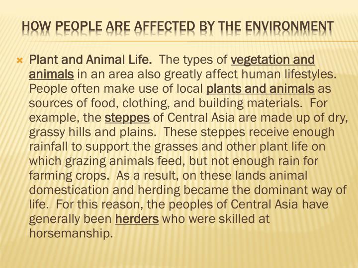 Plant and Animal Life.