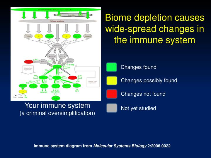 Biome depletion causes wide-spread changes in the immune system