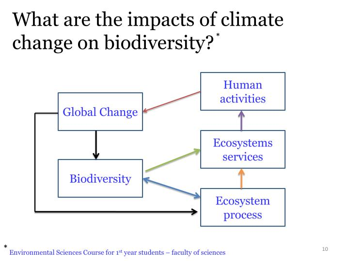 impacts of climate change on biodiversity Climate change is projected to affect all aspects of biodiversity however, the projected changes have to take into account the impacts from other past, present, and future human activities.