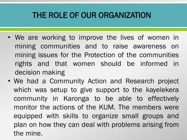 THE ROLE OF OUR ORGANIZATION