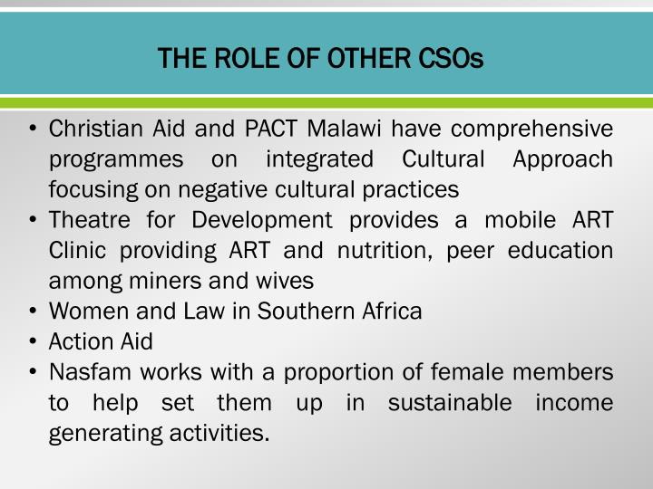 THE ROLE OF OTHER CSOs