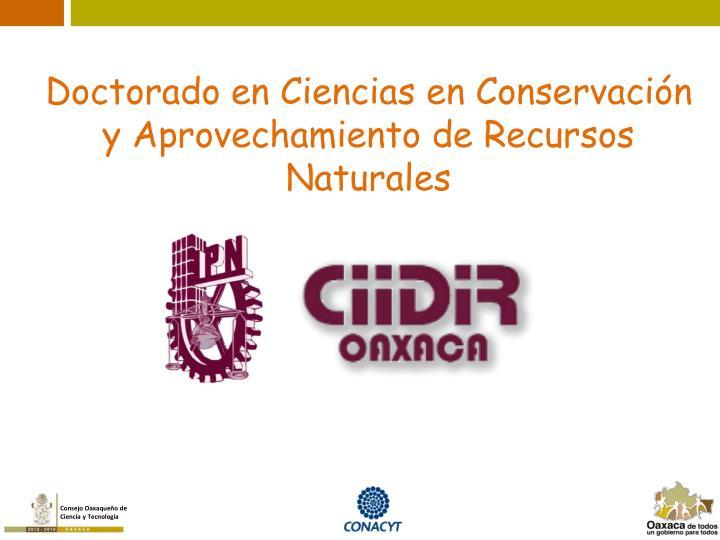 Doctorado en Ciencias en Conservación y Aprovechamiento de Recursos Naturales