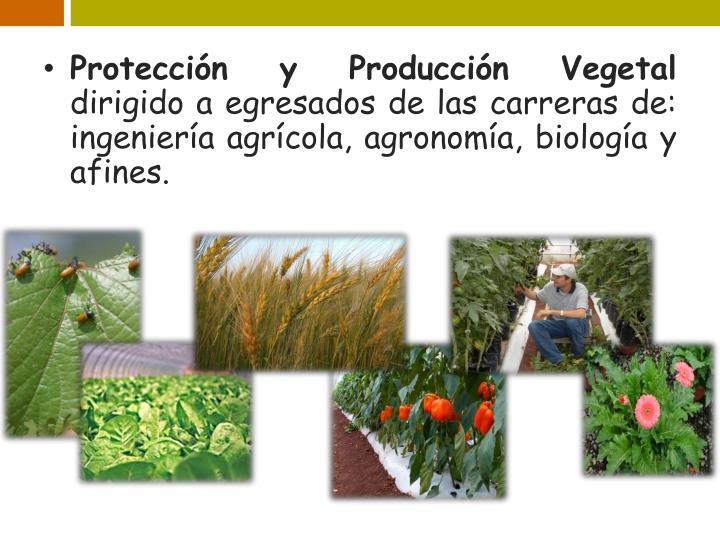 Protección y Producción Vegetal
