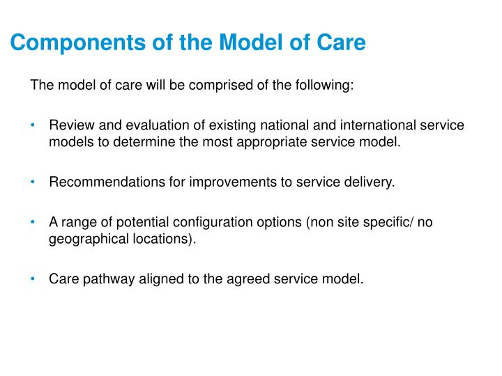 Components of the Model of Care
