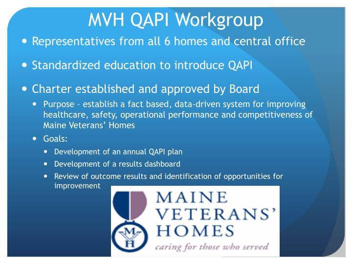 MVH QAPI Workgroup