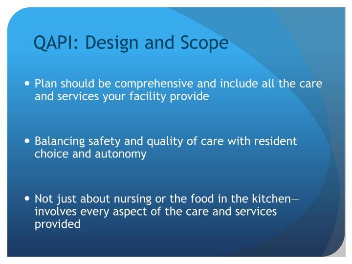 QAPI: Design and Scope