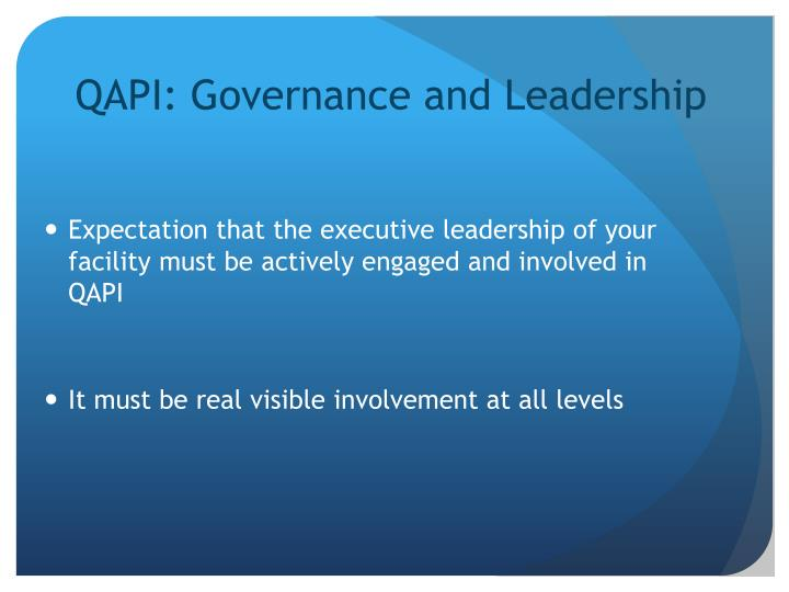 QAPI: Governance and Leadership