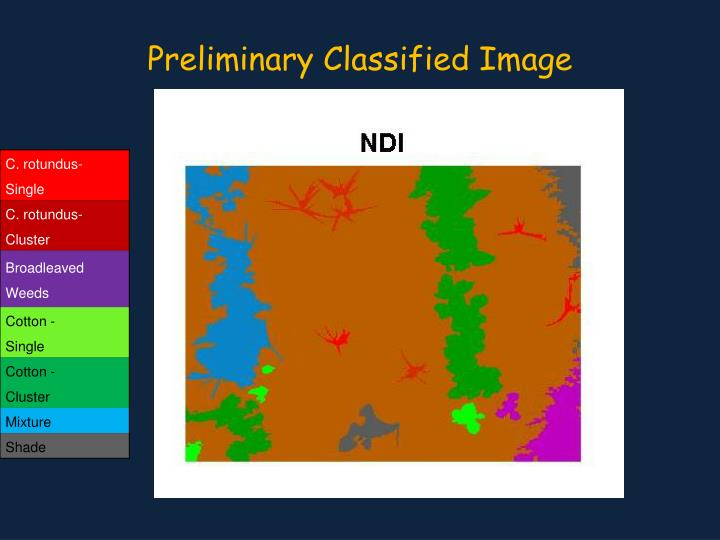 Preliminary Classified Image