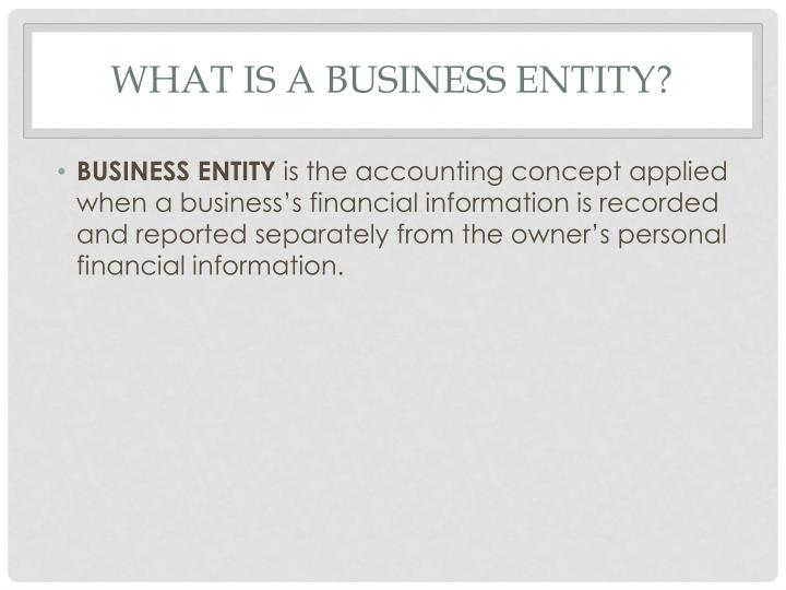What is a Business Entity?