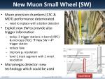 new muon small wheel sw