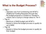 what is the budget process