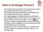 what is the budget process3