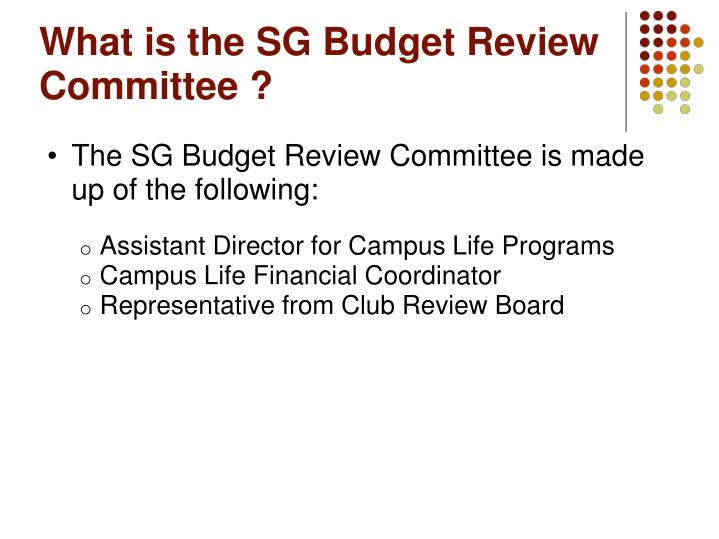 What is the SG Budget Review Committee ?