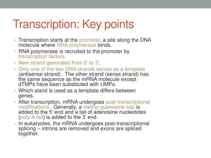 Transcription: Key points