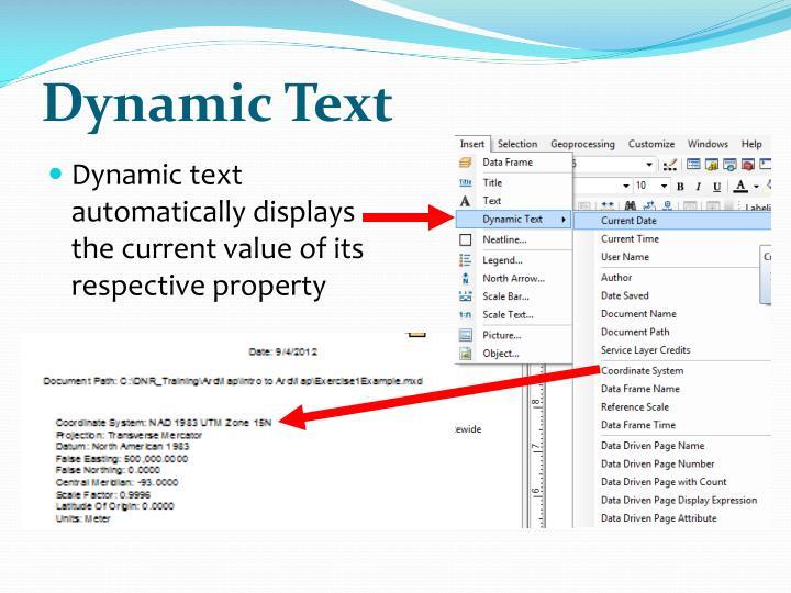 Dynamic Text