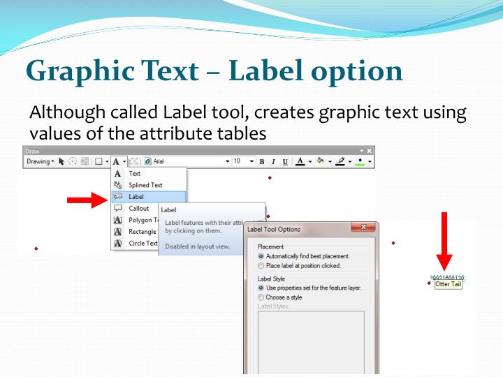 Graphic Text – Label option