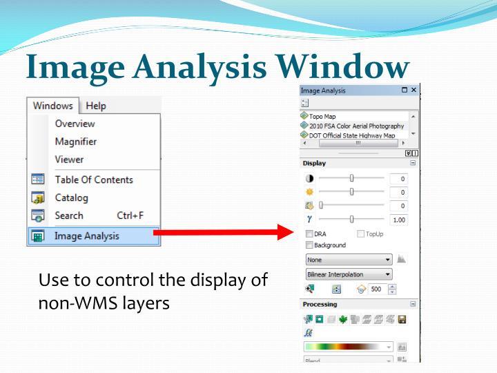 Image Analysis Window