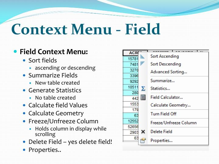 Context Menu - Field