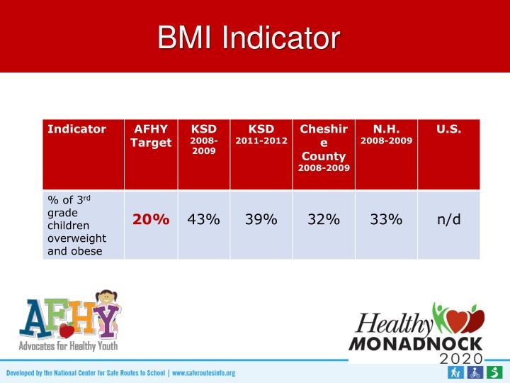 BMI Indicator