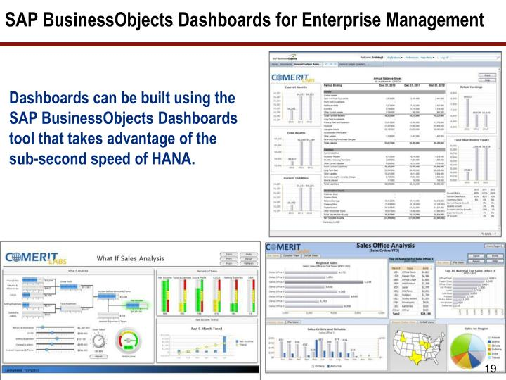 SAP BusinessObjects Dashboards for Enterprise Management