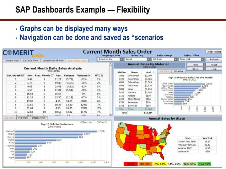 SAP Dashboards Example — Flexibility