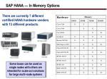 sap hana in memory options1