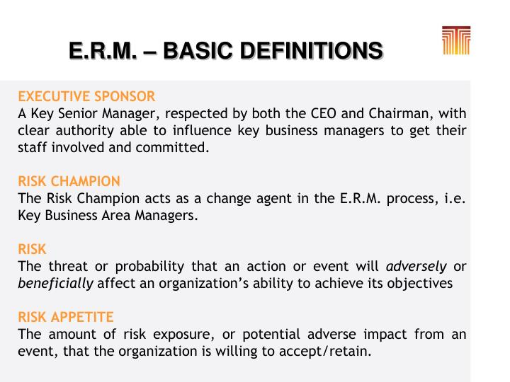 E.R.M. – BASIC DEFINITIONS