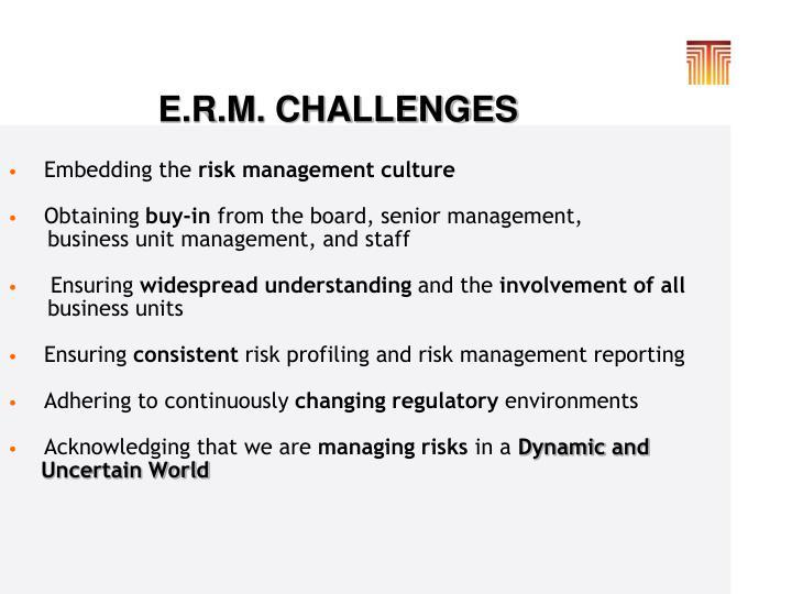 E.R.M. CHALLENGES