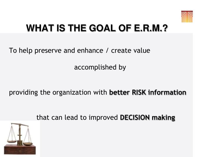 WHAT IS THE GOAL OF E.R.M.?