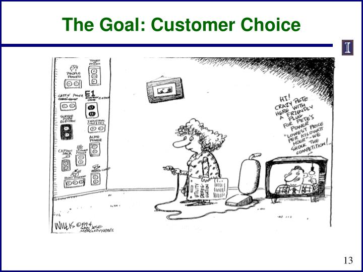 The Goal: Customer Choice