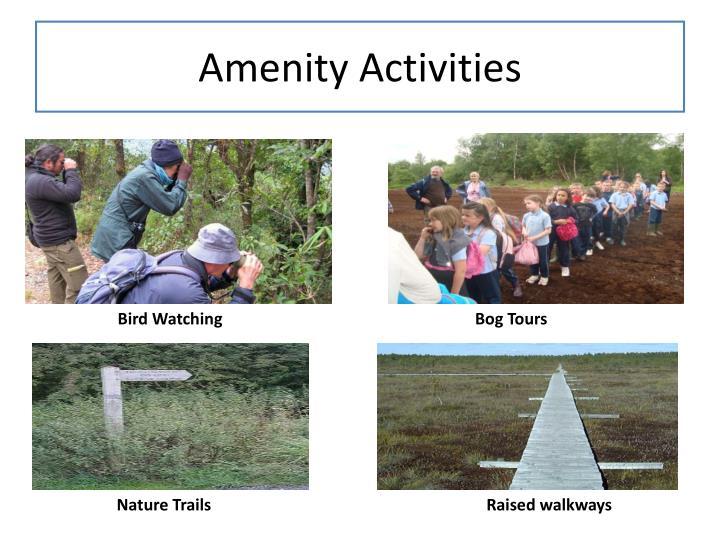 Amenity Activities