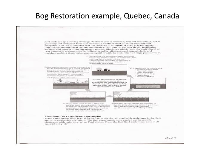 Bog Restoration example, Quebec, Canada