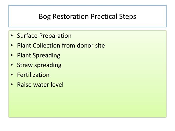Bog Restoration Practical Steps