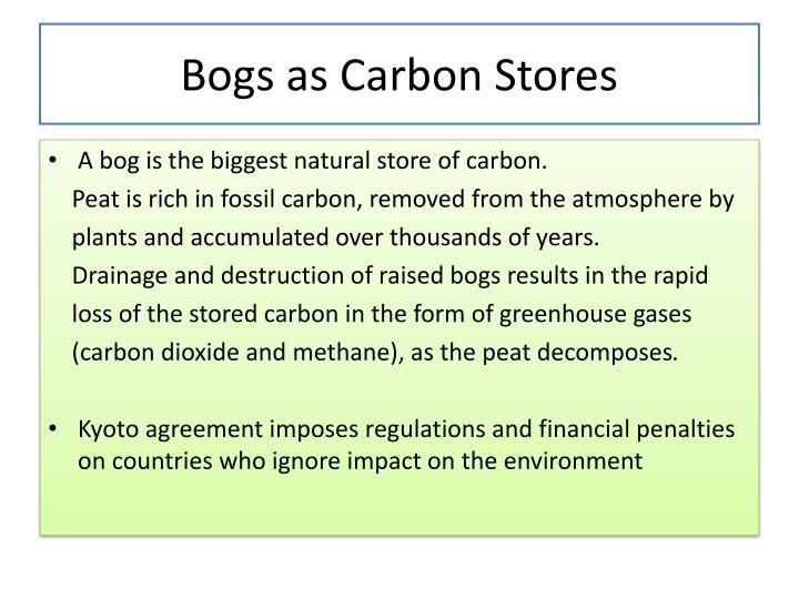 Bogs as Carbon Stores