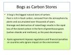 bogs as carbon stores