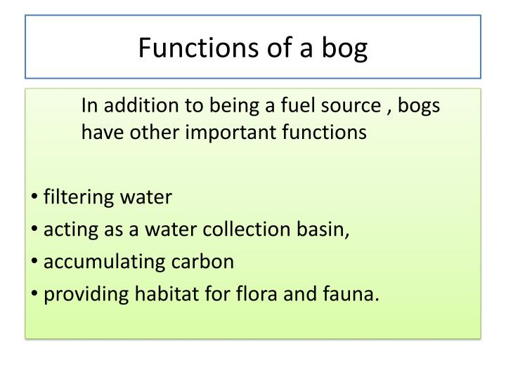 Functions of a bog