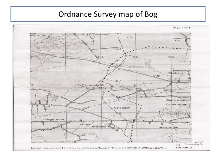 Ordnance Survey map of Bog