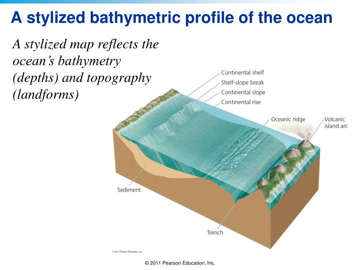 A stylized bathymetric profile of the ocean