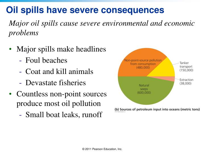Oil spills have severe consequences