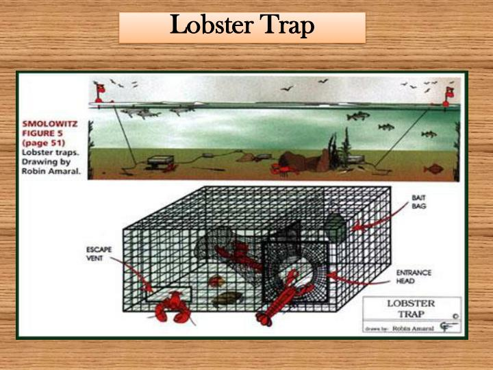 PPT - Maine Lobstering Today The Real Story PowerPoint Presentation - ID:1628795